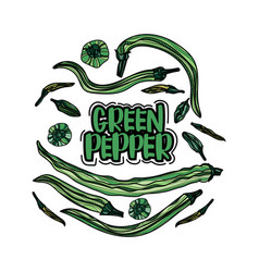 Hand drawn green peppers vector