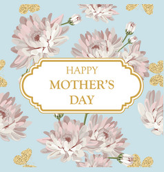 Happy mothers day shabchic chrysanthemums on vector