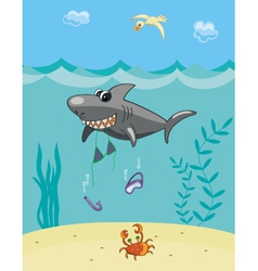 Shark attack vector image