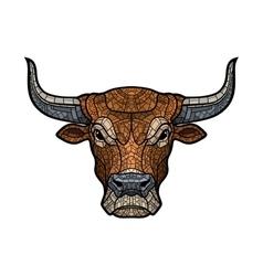 Bull head isolated vector image vector image