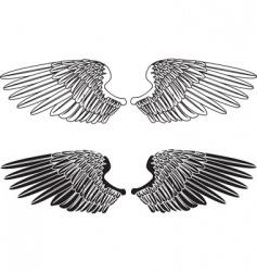 spread wings vector image