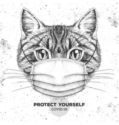 Animal cat wearing face medical mask covid-19 vector