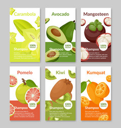 Collection package label organic shampoo vector
