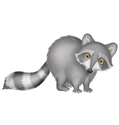 Cute raccoon cartoon vector