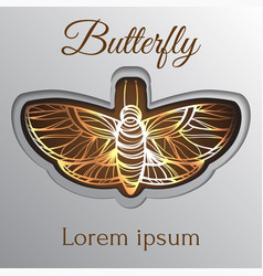 Gold luxury abstract butterfly template on brown vector