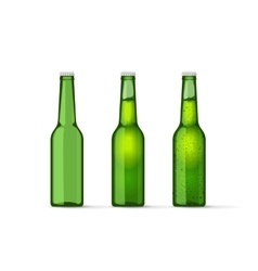 green beer bottles set with bubbles full vector image