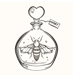 Hand drawn engraving Sketch of Bee in the bottle vector image