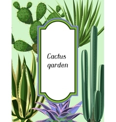 Frame with cactuses and succulents set Plants of vector image vector image