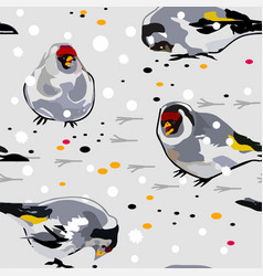 Birds goldfinch on the snow vector