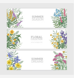 Bundle of horizontal banner templates with elegant vector