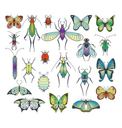 colored insects isolate on white bugs and vector image