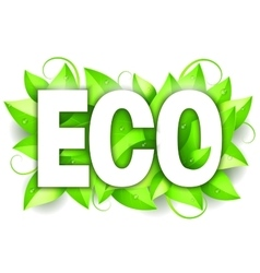 Eco Word and Leaves vector image