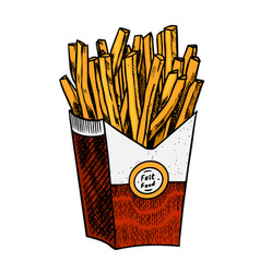 french fries in vintage style fast food vector image