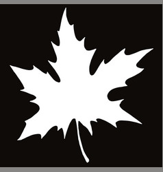 maple leaf silhouette in on black background vector image