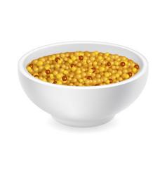 Mustard in a bowl vector