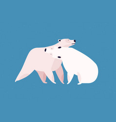 polar bears couple flat vector image