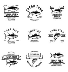 set of tuna fish labels design element for logo vector image
