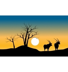 Silhouette of dry tree and antelope vector