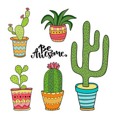 Succulent and cactus set cartoon plants in pots vector