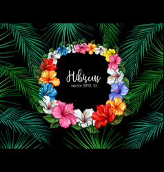 tropical leaf hibiscus summer frame banner vector image
