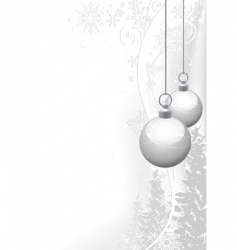 white christmas and winter floral vector image