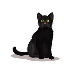 black cat with bright green eyes home pet small vector image