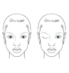 Face chart woman vector