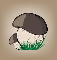 Mushrooms with green grass vector