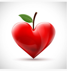 red human heart with a leaf in the form of a berry vector image