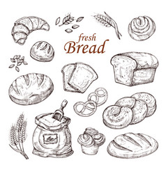Sketch bread hand drawn bakery products vector
