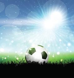 Soccer ball in grassy landscape vector image