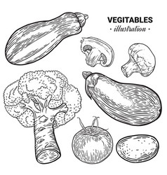 Vegetables hand drawn sketch vector