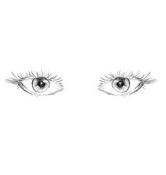 eyes hand drawn vector image