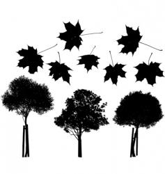 tree and maple leaves silhouettes vector image vector image