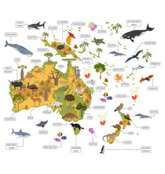 Australia and oceania flora and fauna map flat vector