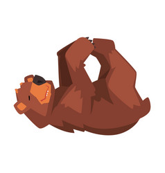 Cute brown bear lying on his back wild forest vector