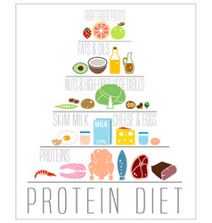 high protein diet poster vector image