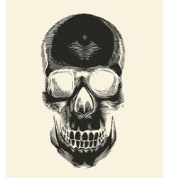Human skull silhouette drawn in vintage engraving vector