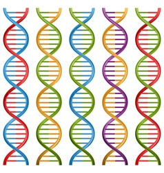 Set of DNA symbols for science and medicine design vector image