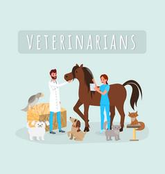 veterinarians work flat male vector image