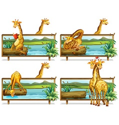 Giraffes in the wooden frames vector image vector image