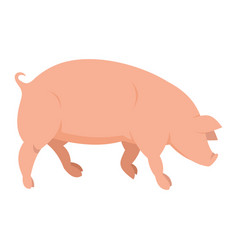 pink pig in flat style vector image vector image