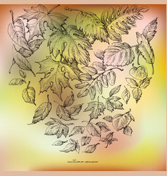 autumn background hand drawn falling leaves vector image