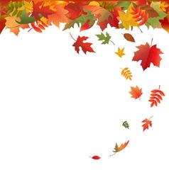 Falling leaves vector