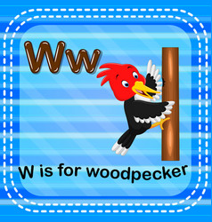 Flashcard letter w is for woodpecker vector