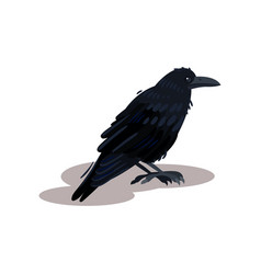 flat icon of black crow raven bird with vector image