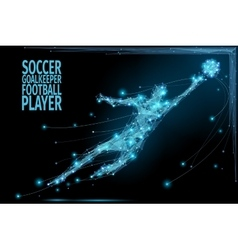 Goalkeeper poly soccer vector image