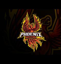 Phoenix mascot sport logo design vector