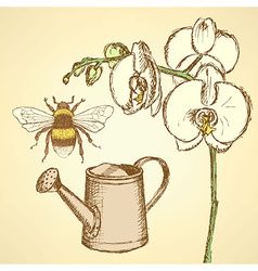 Sketch orchid bee and watering can vector image