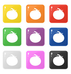 Tomato icons set 9 colors isolated on white vector